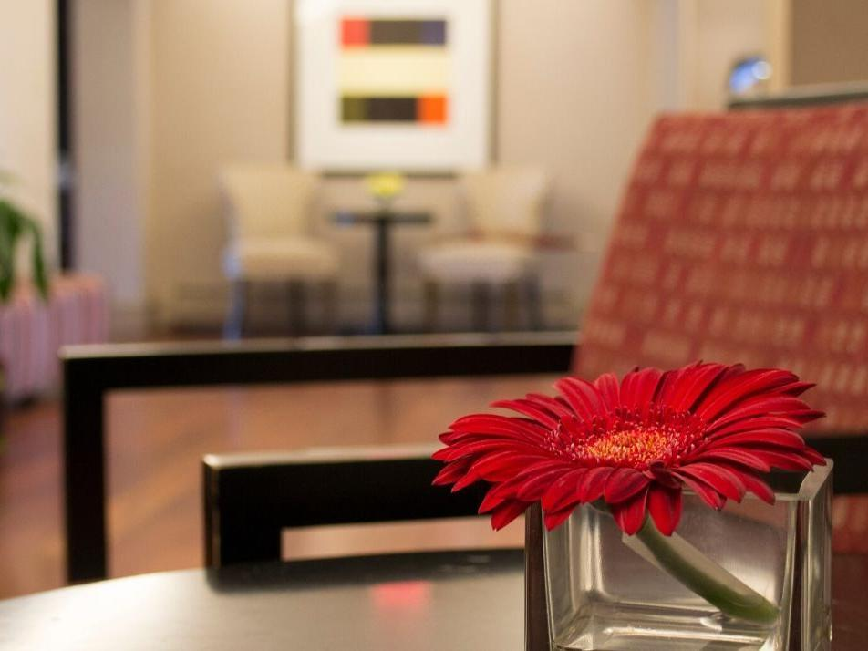 Gerbera daisy on table in lobby