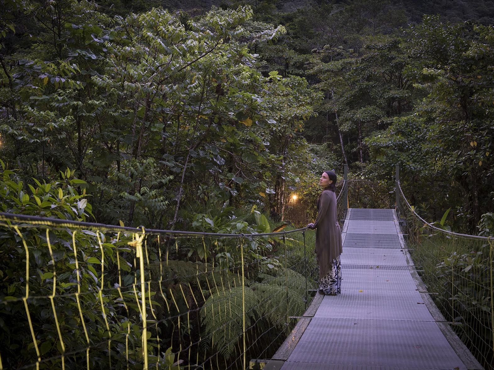 woman standing on bridge gazing at trees