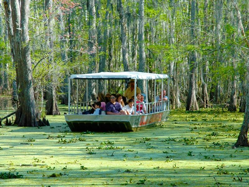 A group of people in a Swamp Boat Tour near the hotel