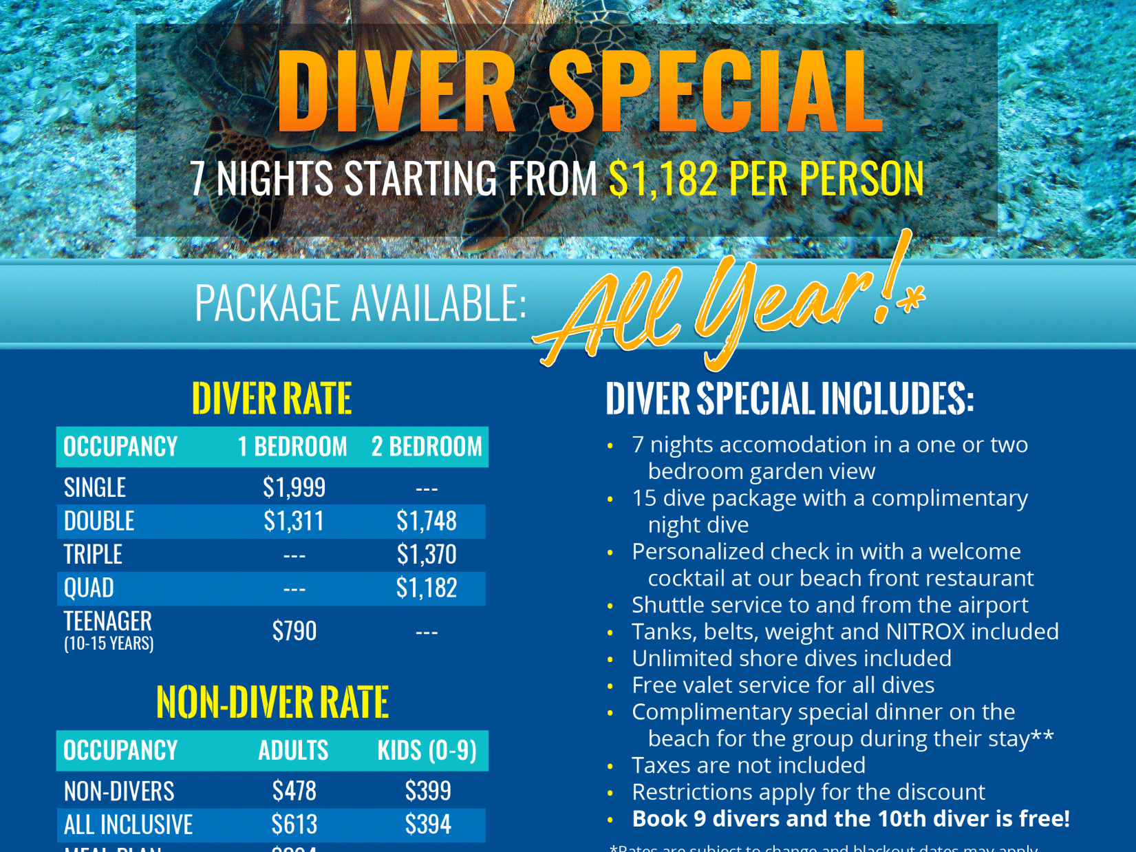 flyer with diver special