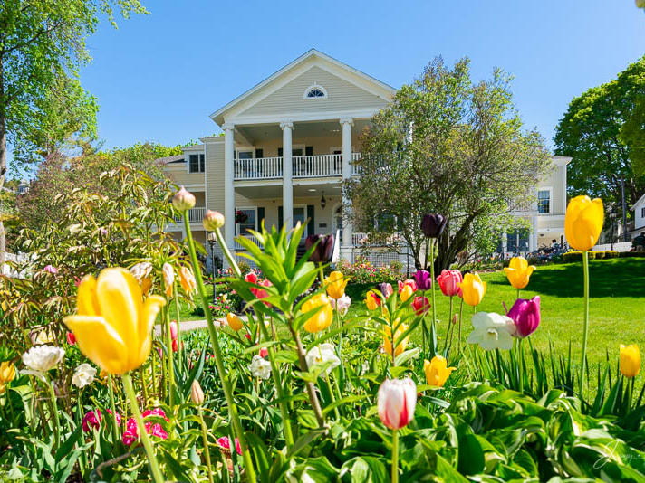 Harbour View Inn with Tulips