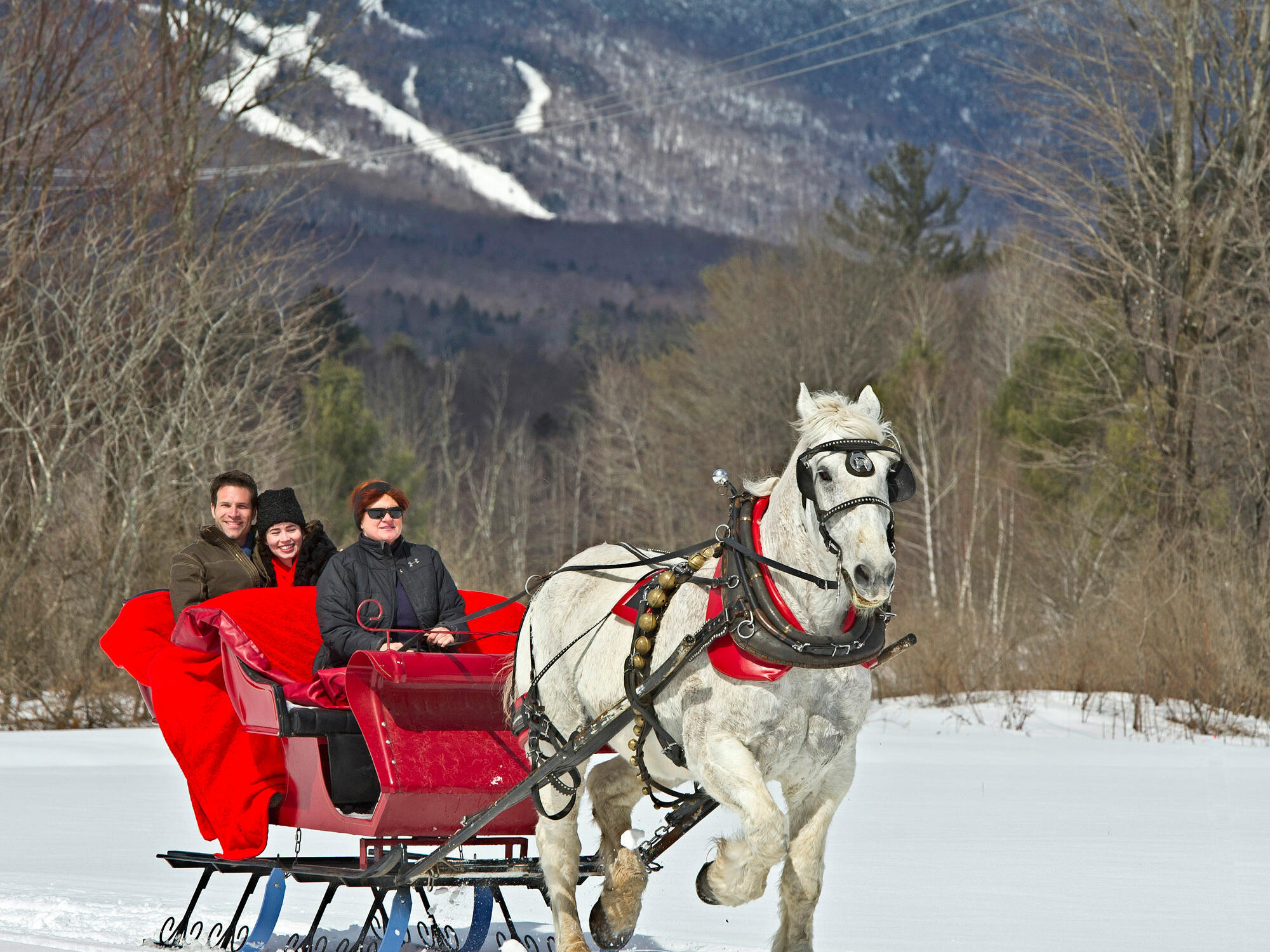 couple on sleigh ride