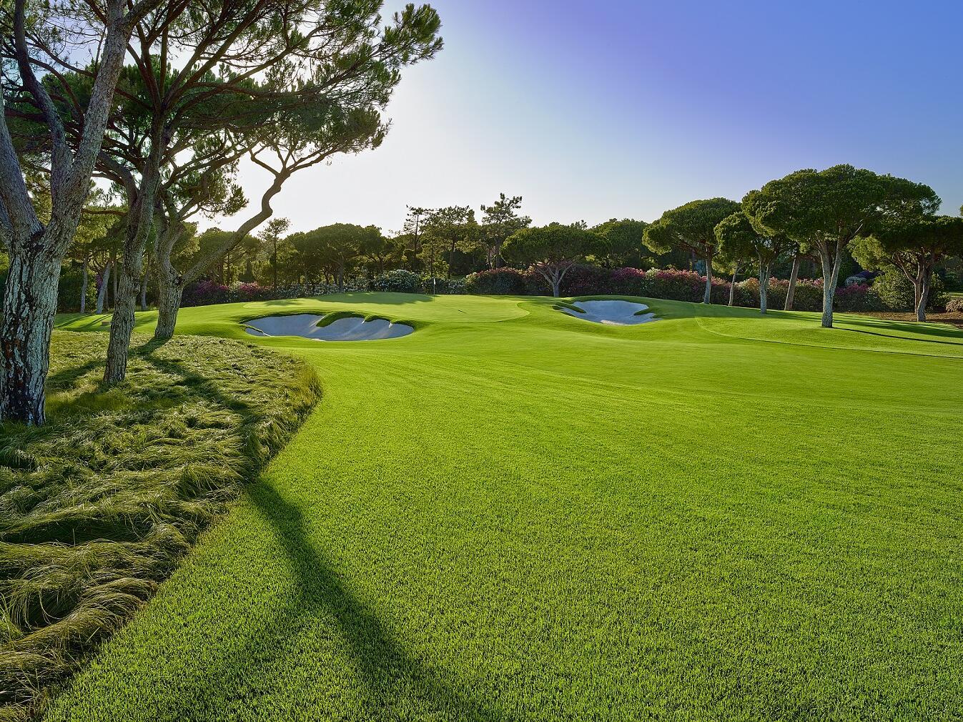 Golf Ground -  The Magnolia Hotel