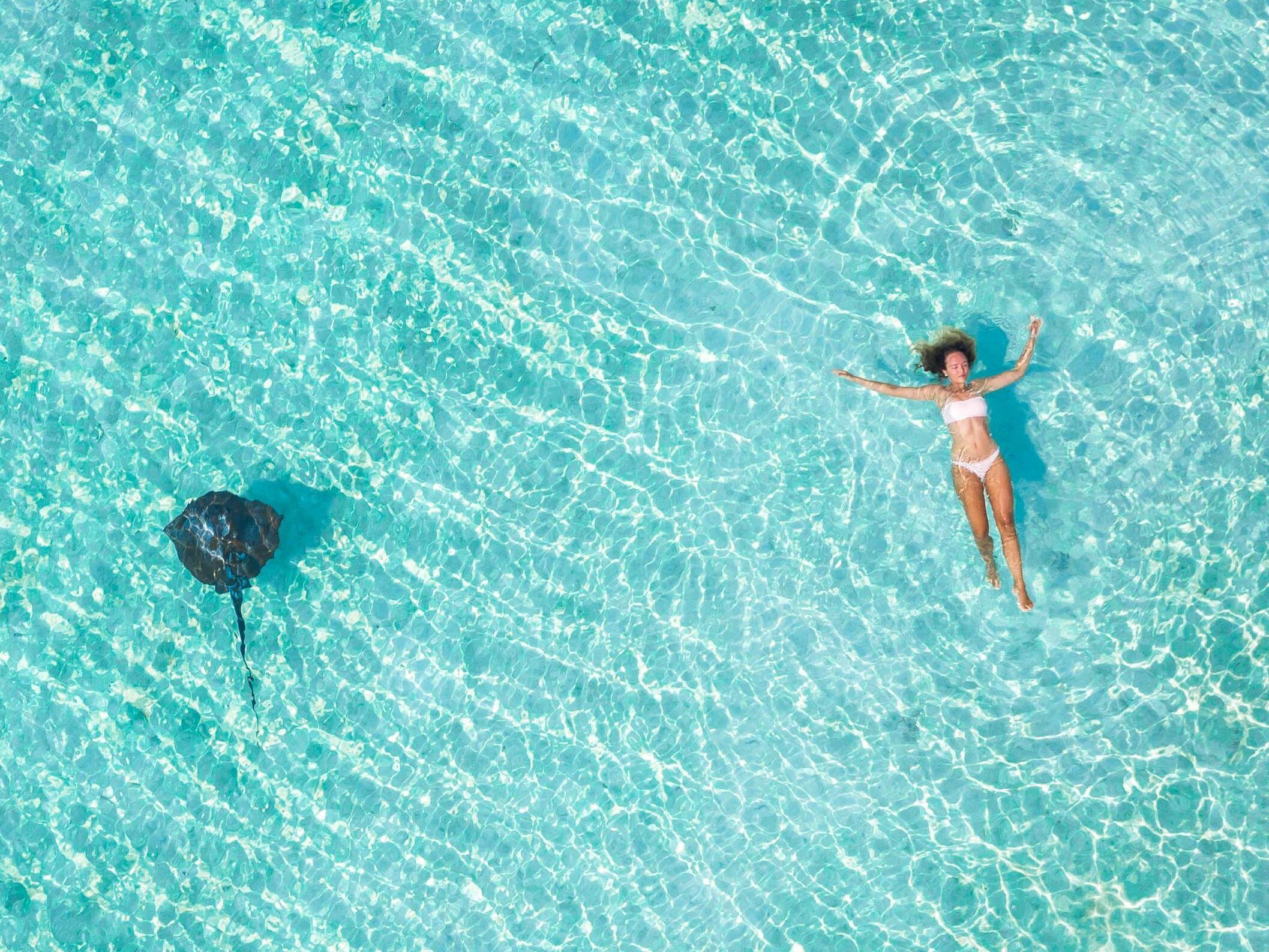 James Vodicka_Swimming at Heron Island