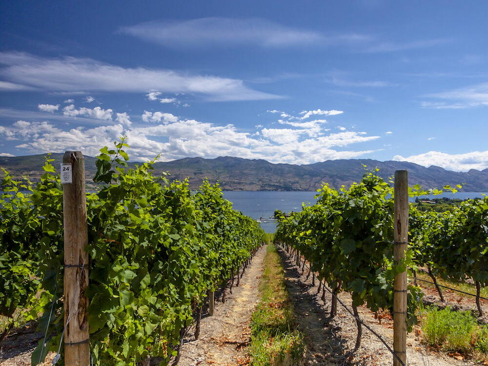 Wine regions near Outback Lakeside Vacation