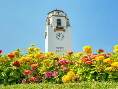 flowers in front of a clock tower