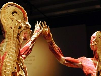 two bodies at a science exhibit