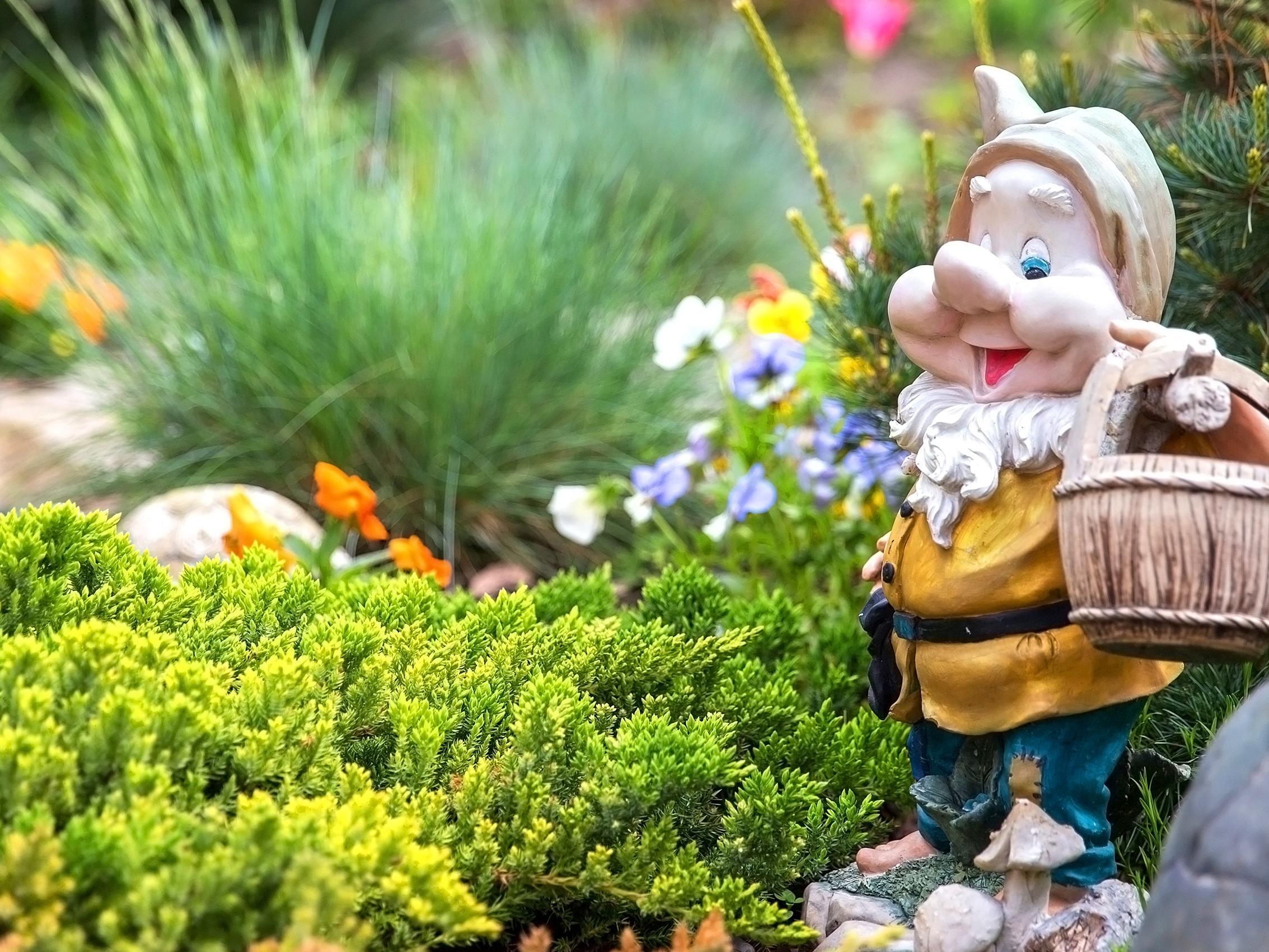 The Gnome Reserve and Wild Flower Garden, Devon
