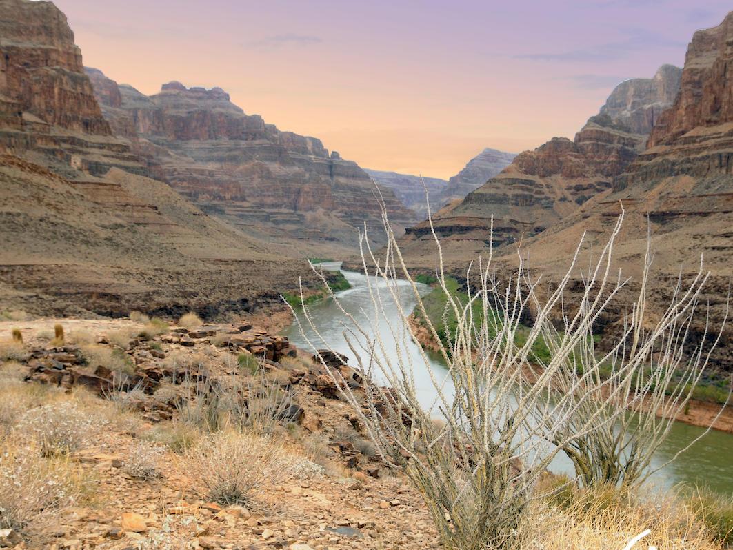 desert and water