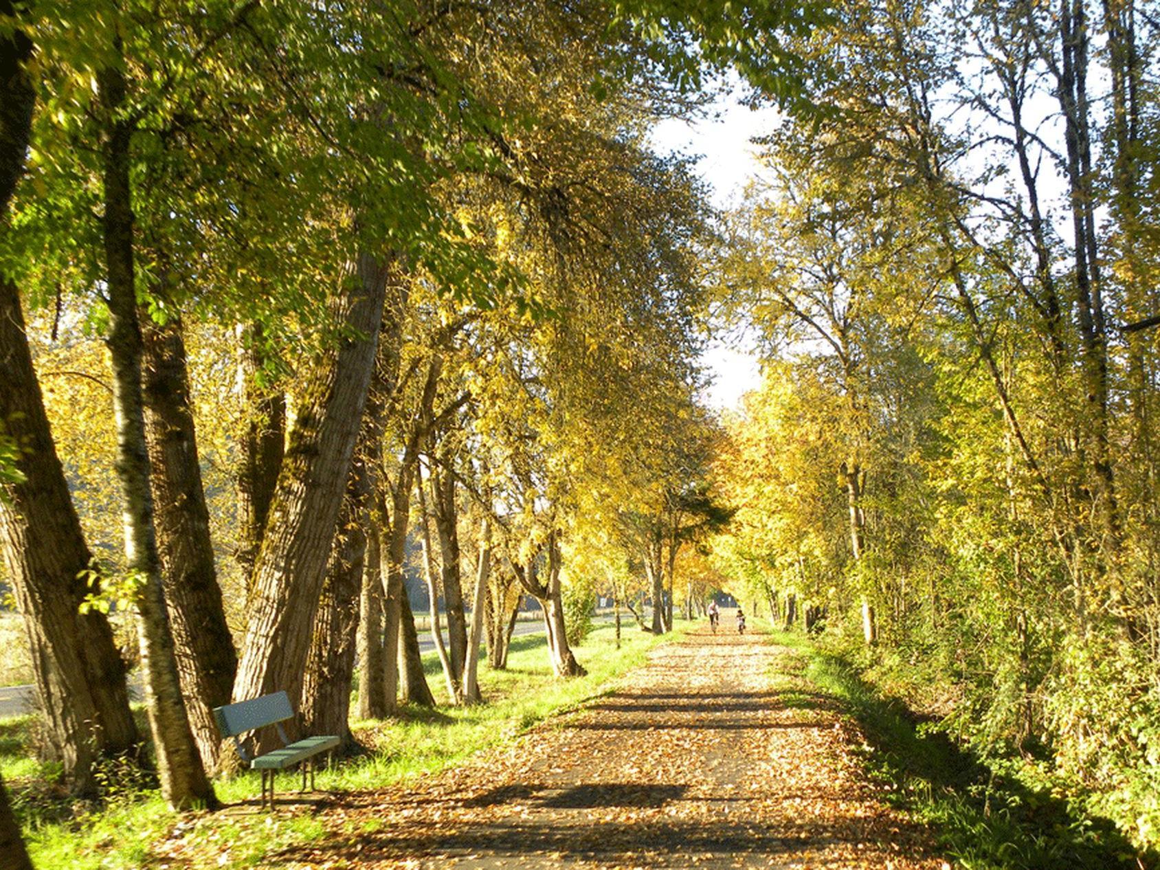 Row River Park