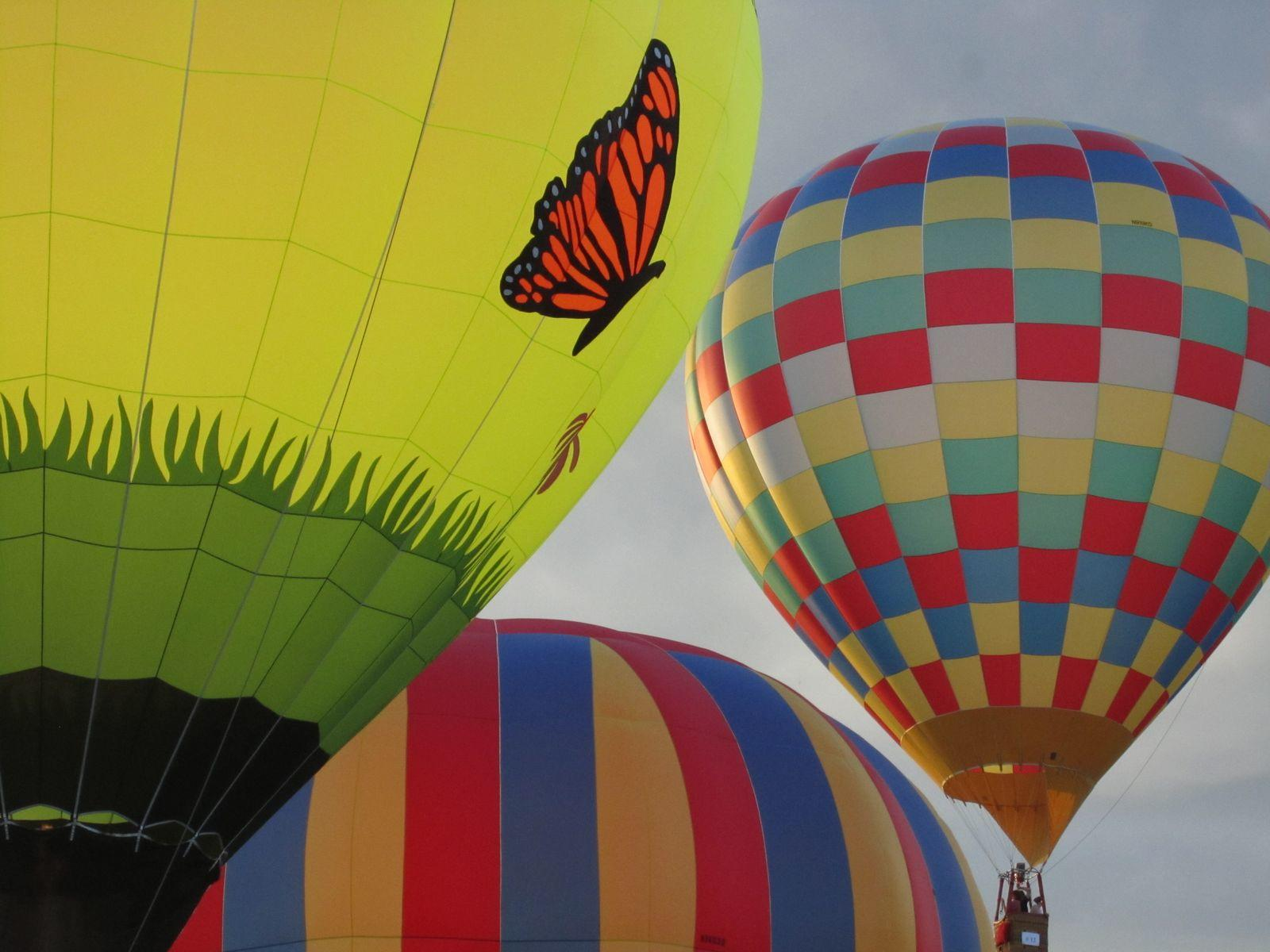 Hot air balloons, one with a monarch butterfly.