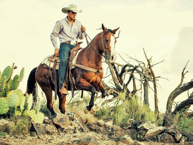 A man horse riding through a meadow