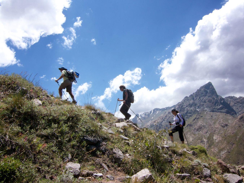 Trekking Mirador de Las Orquideas near NOI Puma Lodge Hotel
