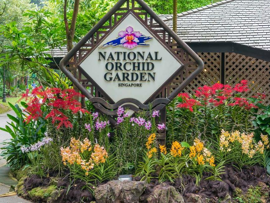 National Orchid Garden - Goodwood Park Hotel