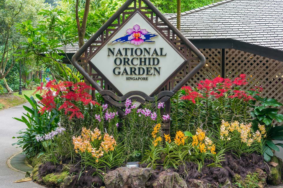 Singapore Botanic Gardens National Orchid Garden Attractions Near Goodwood Park Hotel Singapore