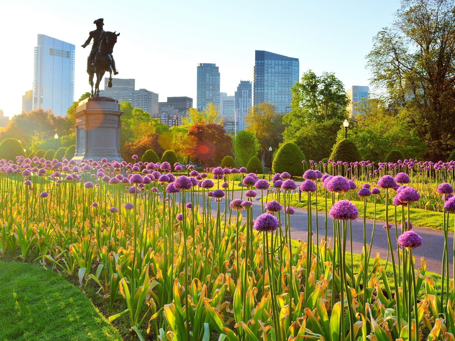 Boston Common in Spring