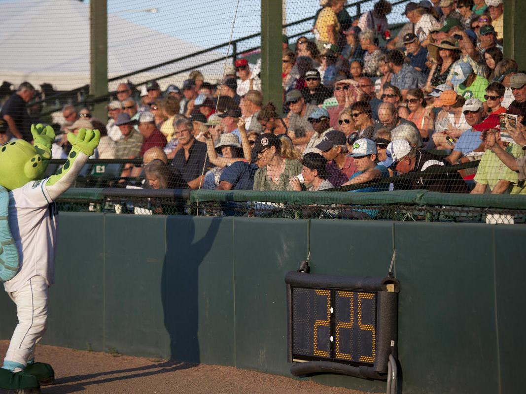 Daytona Tortuga mascot encouraging fans at Jackie Robinson Ballpark.