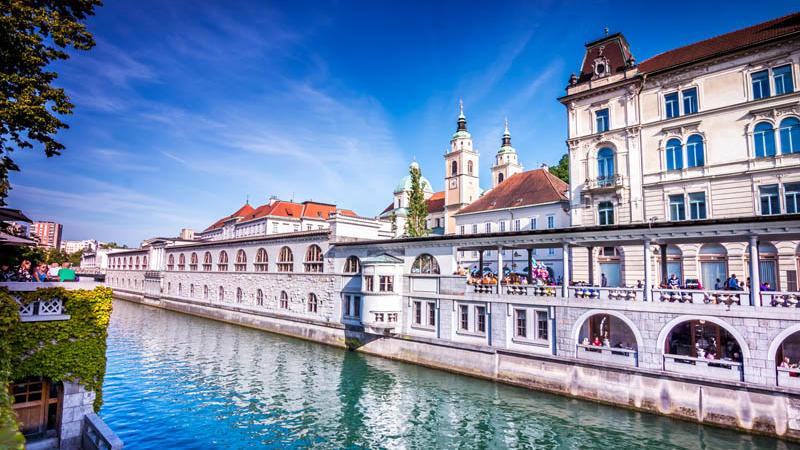 River and Local Market in Ljubljana