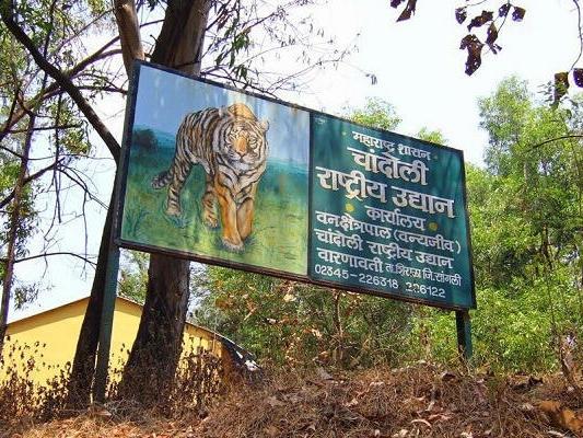 Chandoli National Park