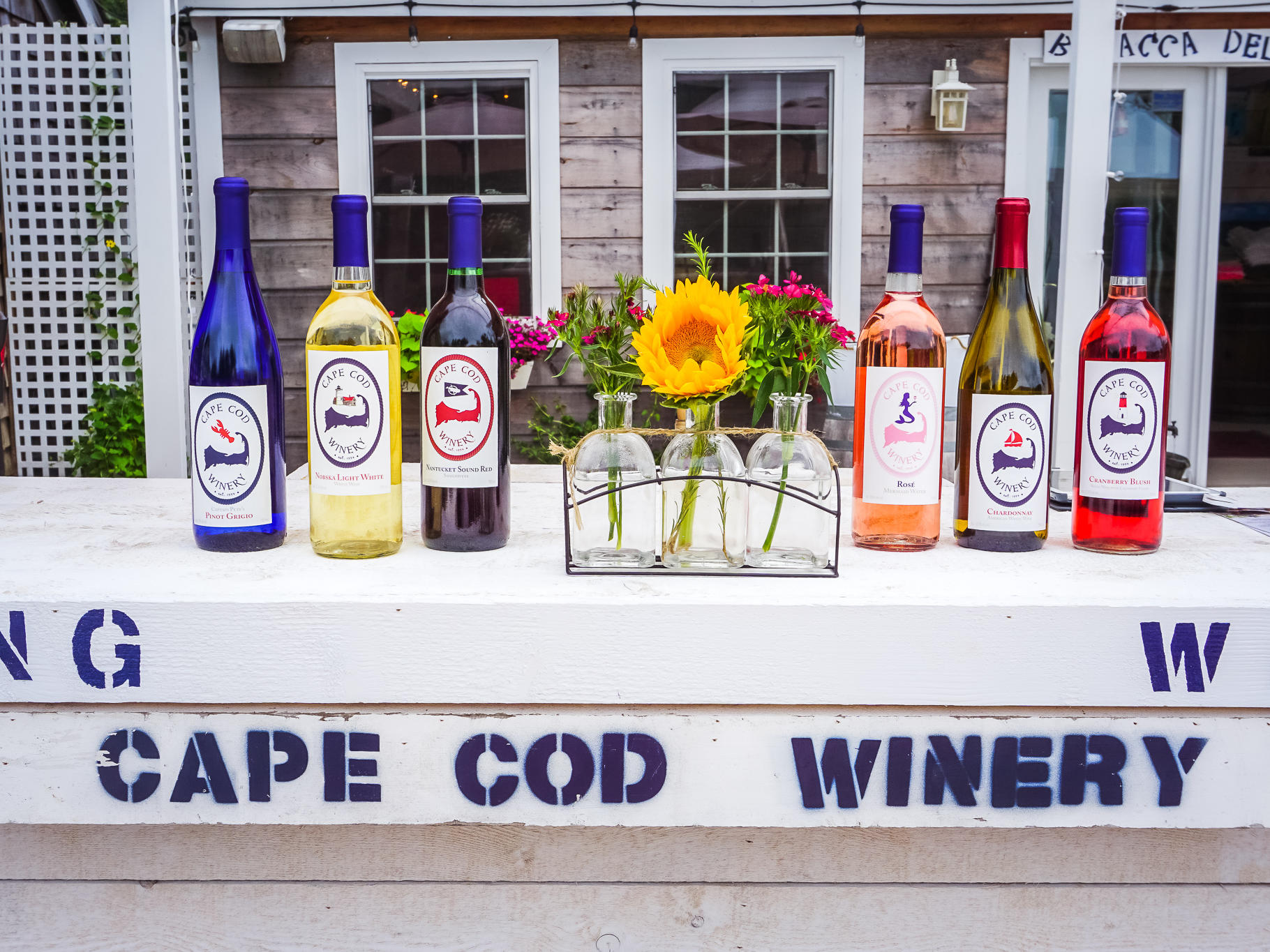 Wines from Cape Cod Winery
