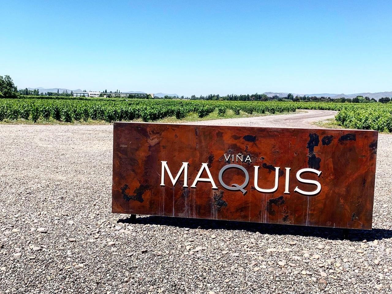 Mass field view of Maquis Vineyard at NOI Blend Colchagua