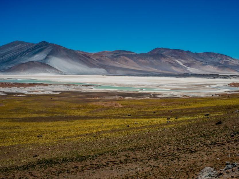 mountains & Atacama Salt Flat near NOI Casa Atacama hotel