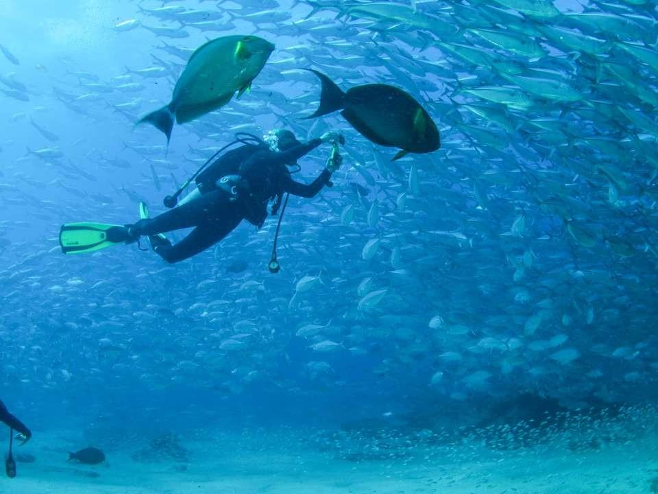 scuba in water