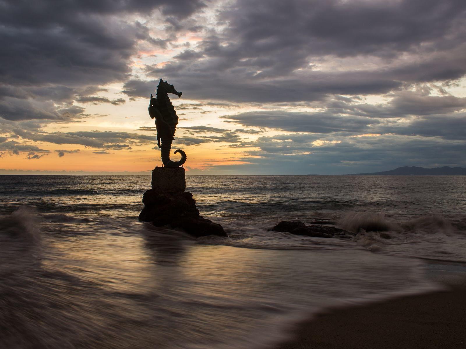 a sea horse statue