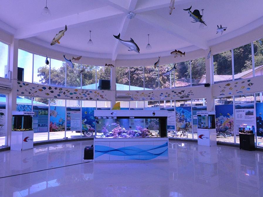 Pusat Ikan Hiasan at Port Dickson