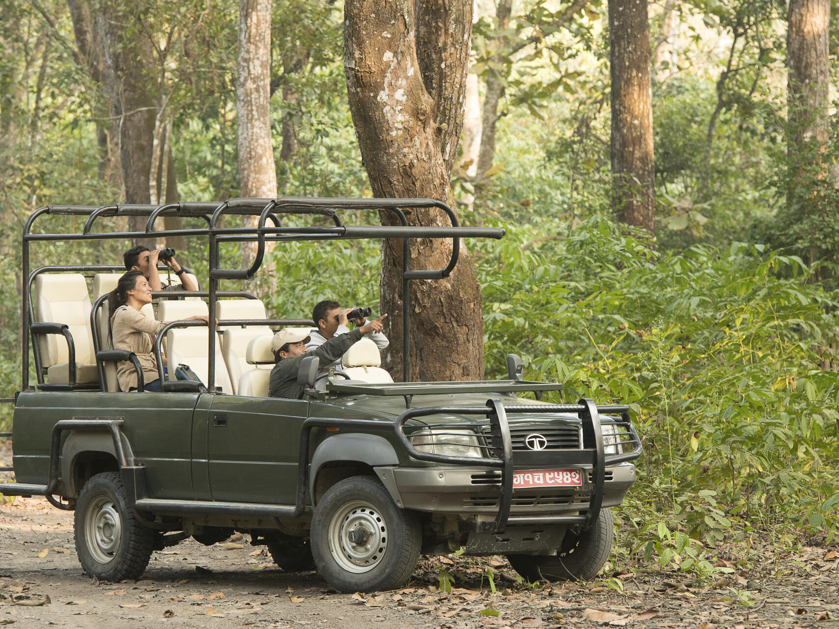 Men exploring nature at forest near  Meghauli Serai