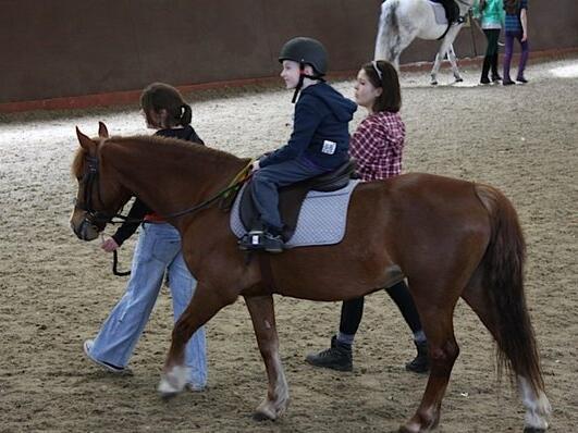 A boy going to ride on a horse back near Hotel Cascais Miragem
