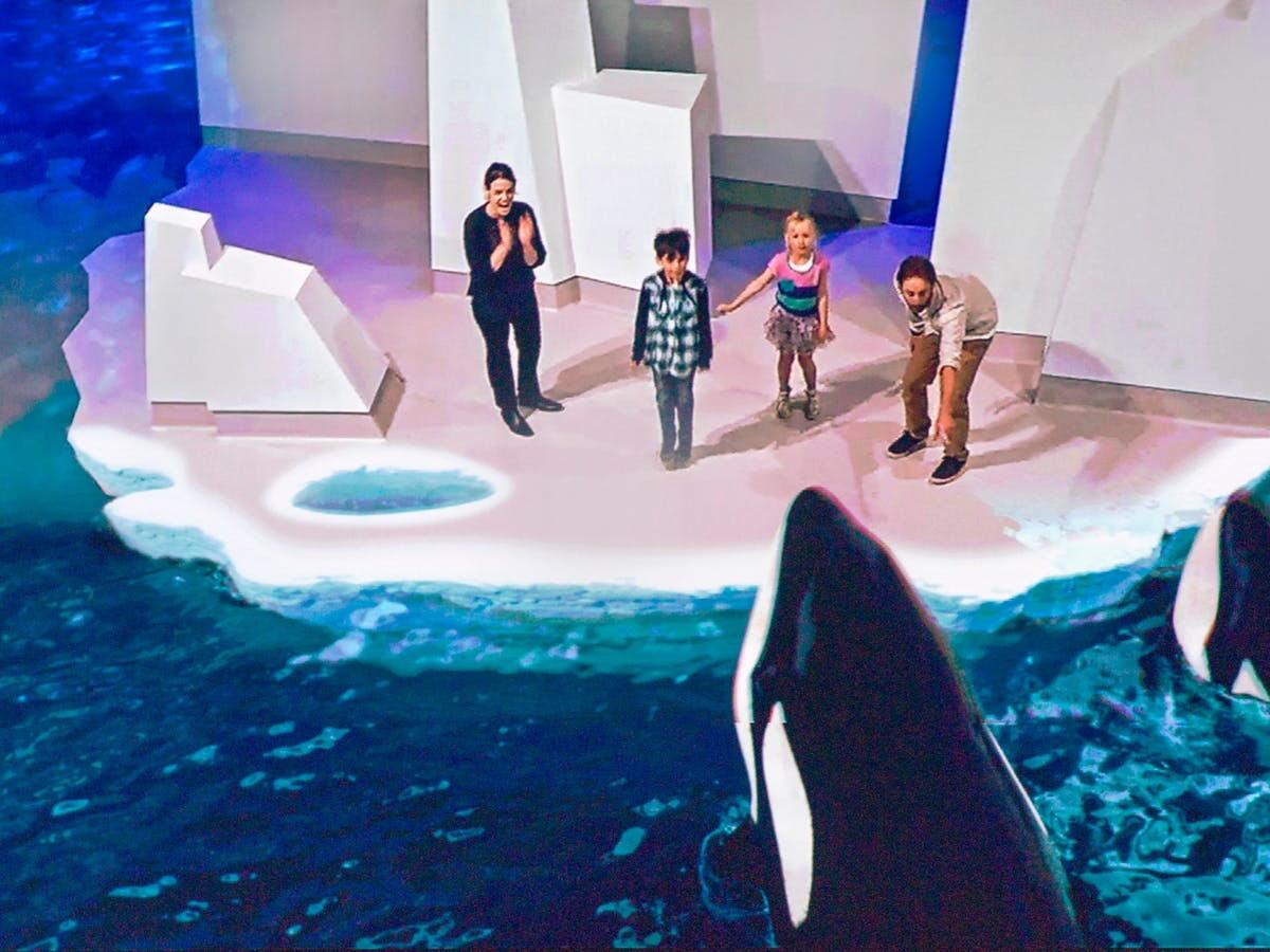 Whales show in Antarctic Journey at Silverwater Resort