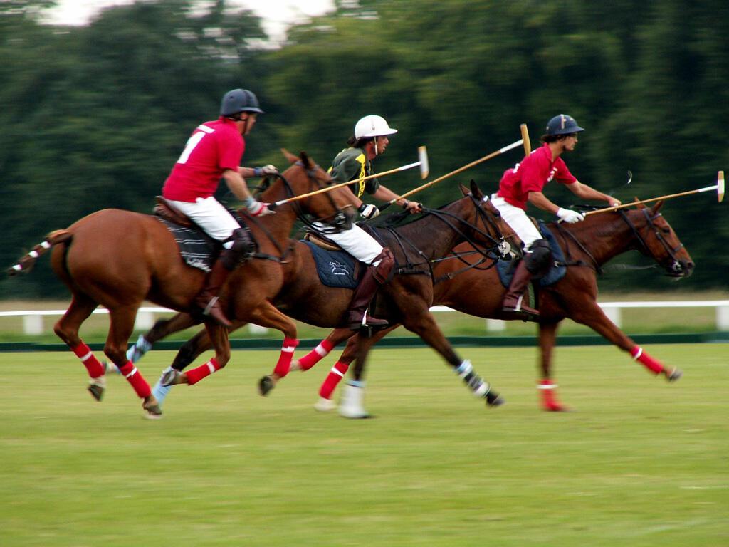 The Campo Argentino Del Polo match