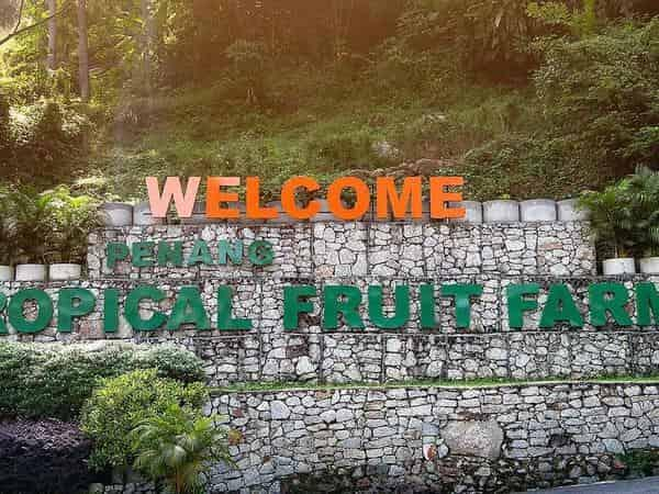 Places of Interest - Tropical Fruit Farm in Penang