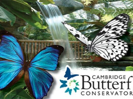 Cambridge Butterfly conservatory near The Inn of Waterloo