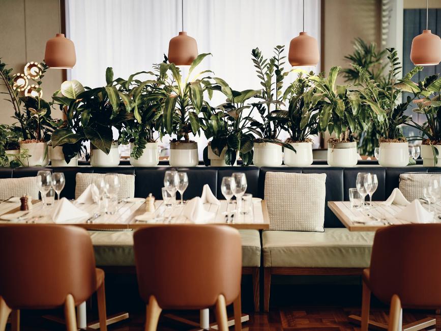 Dining  - Amora Hotel