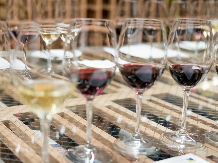 Stein Wine Cellar Tasting Room