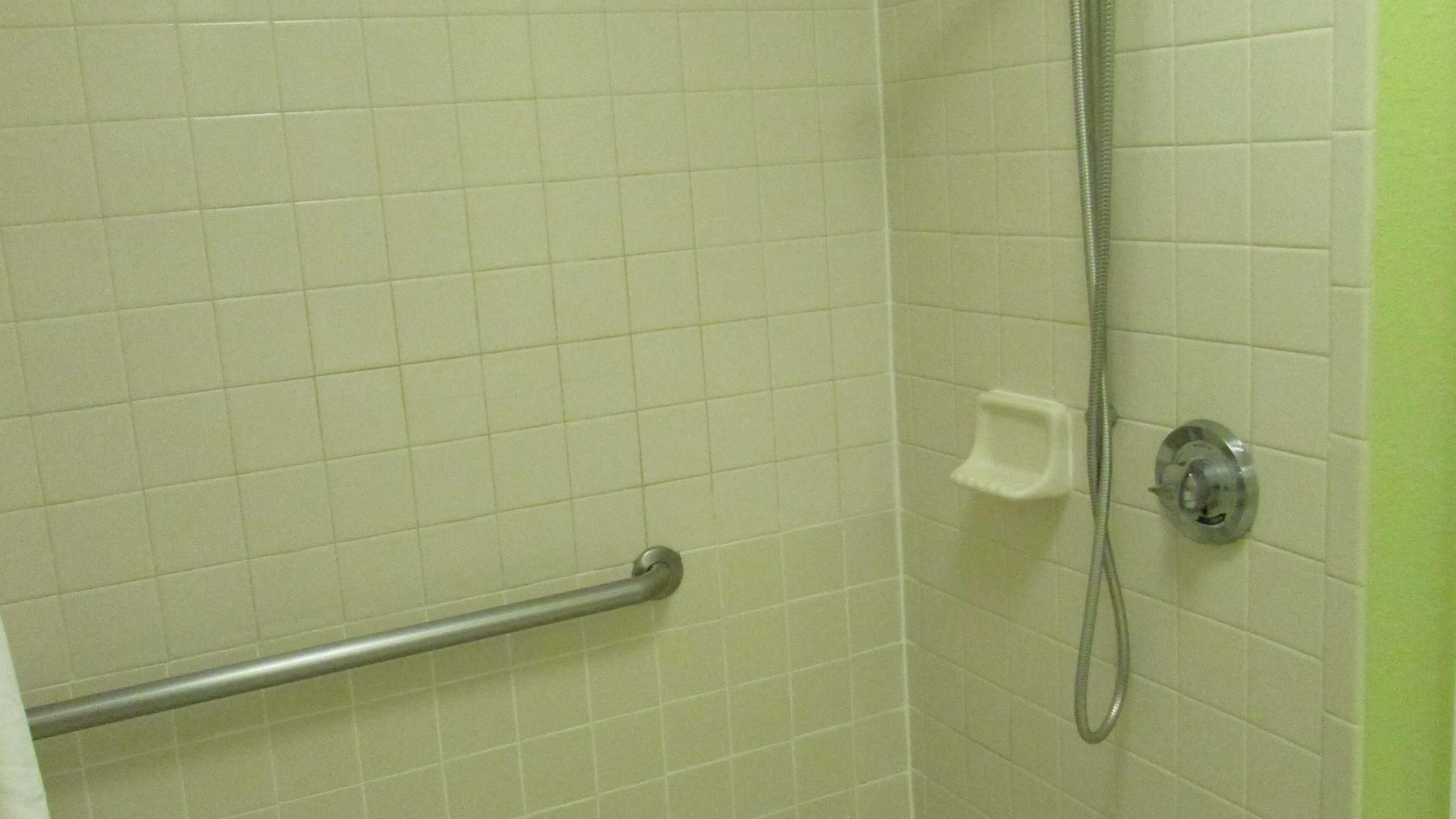 Handicap shower 1
