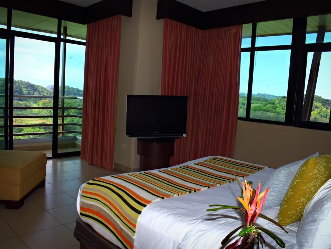 Habitación King Bed