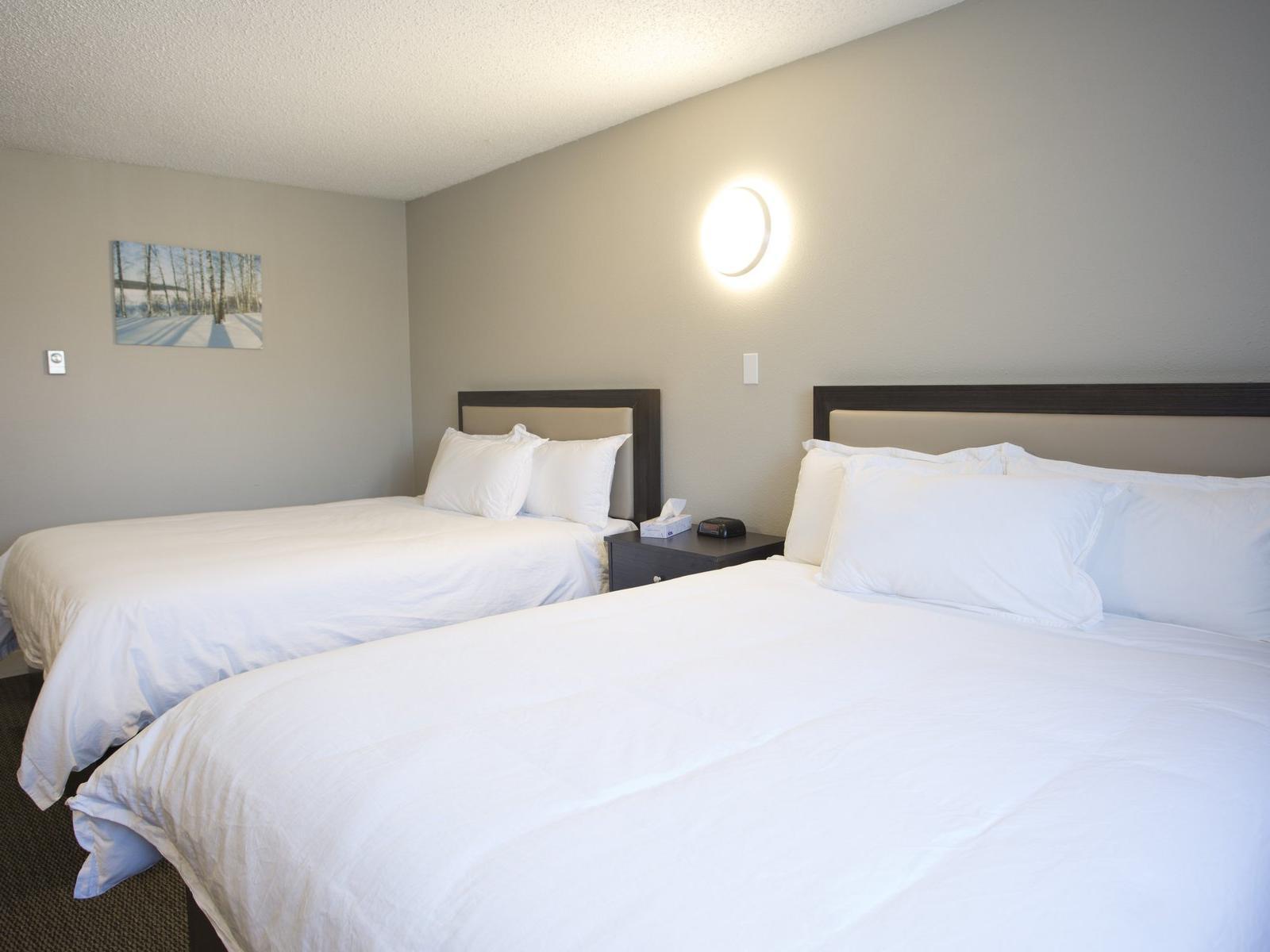 Executive 2 Queen Suites