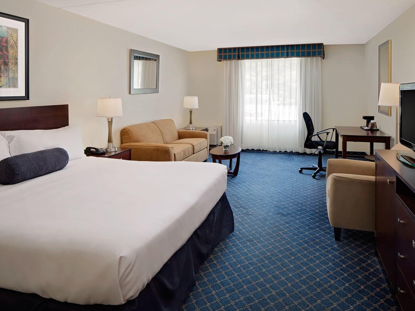 king bed in hotel room with blue carpet and window