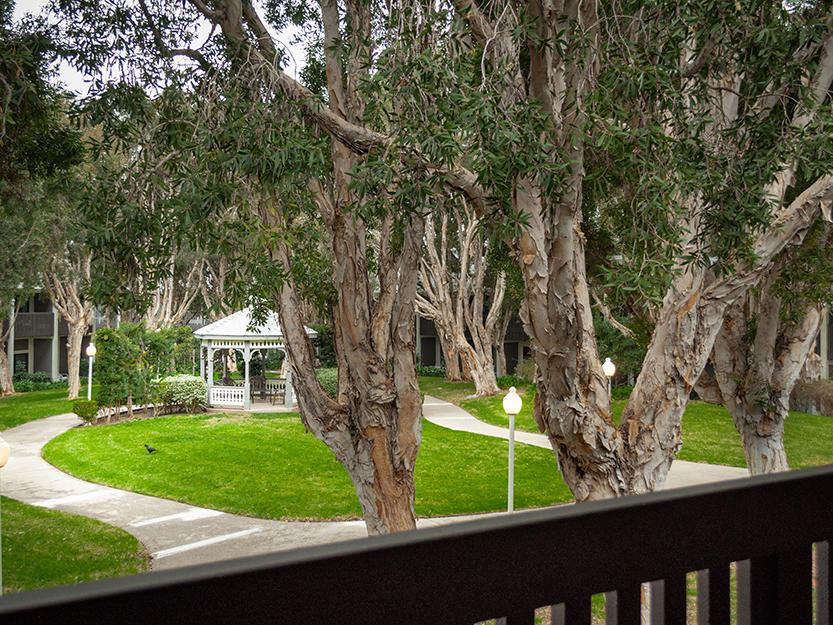 courtyard view from hotel balcony in carlsbad ca