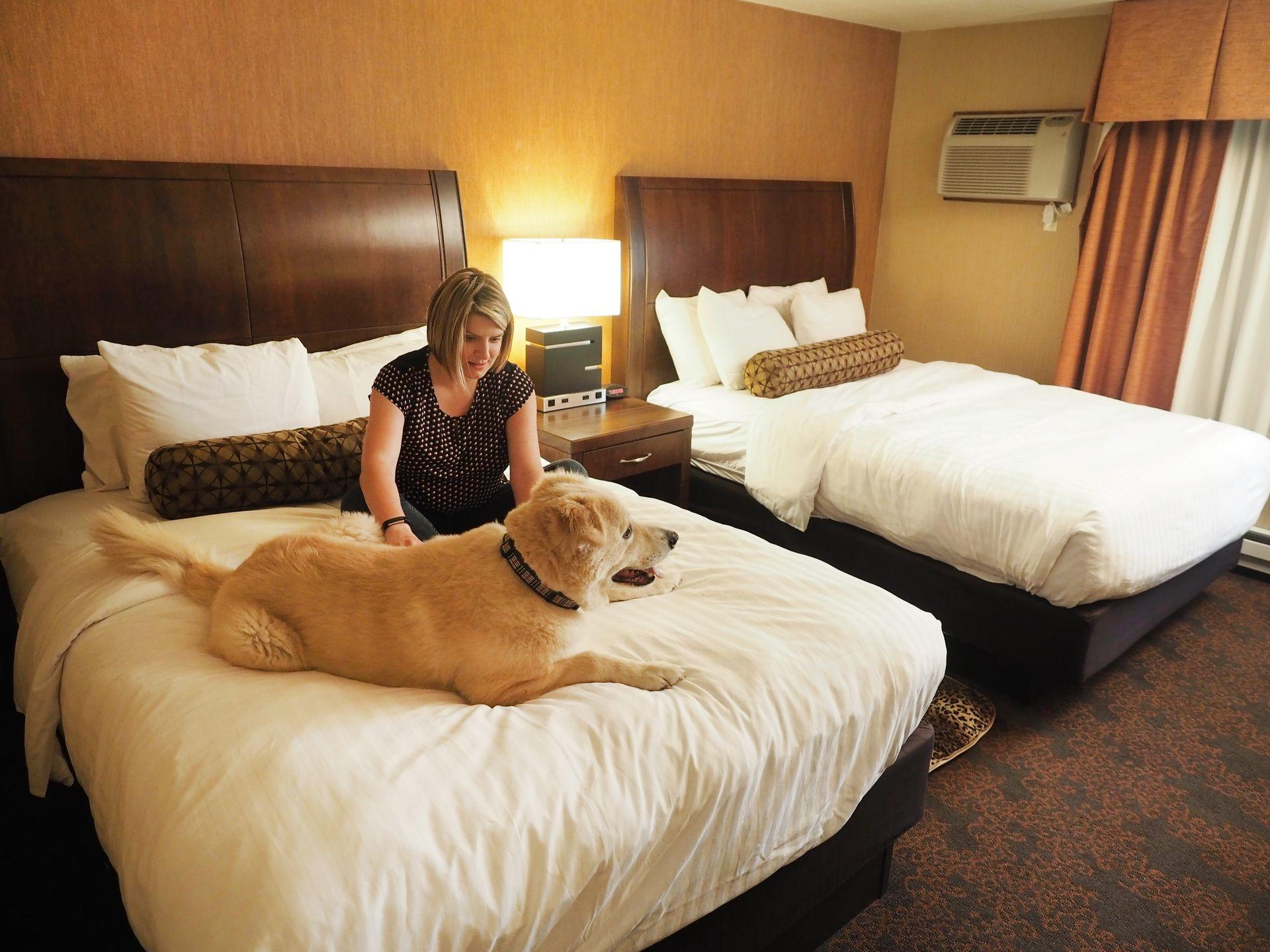 woman and dog sitting on one of two beds in room