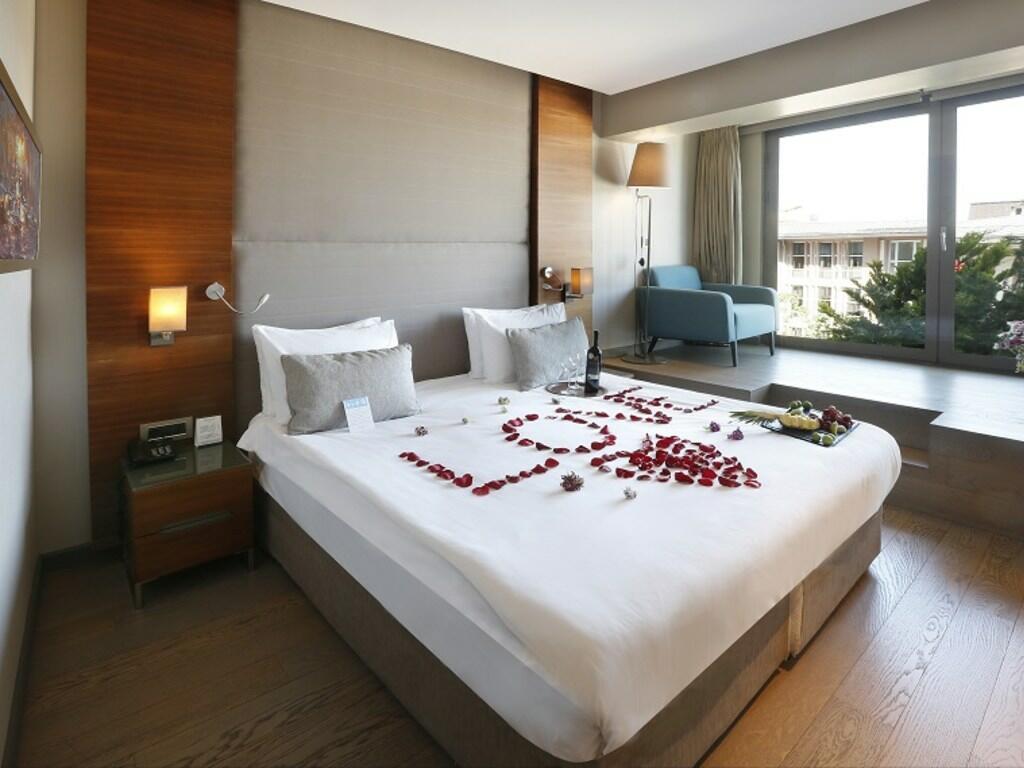 Standard Room at Hotel Arcadia Blue Istanbul
