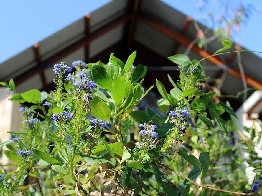 Six Seasons Garden Tours at Pullman Bunker Bay Resort