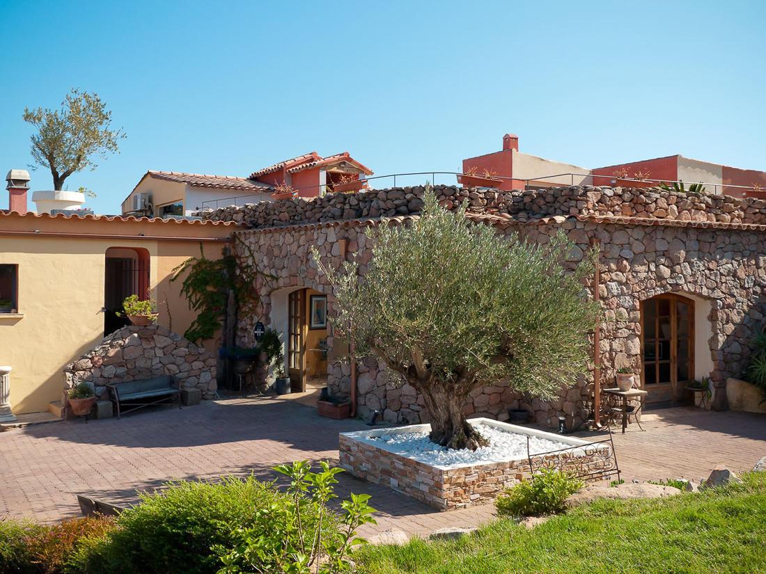 Garden overlooking the Olive Tree