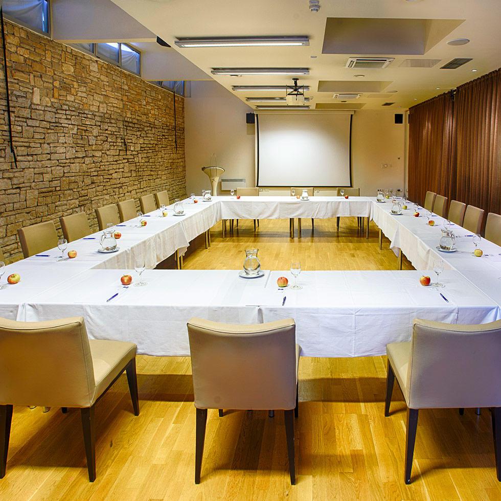 falkensteiner-funimation-borik-meetings-5