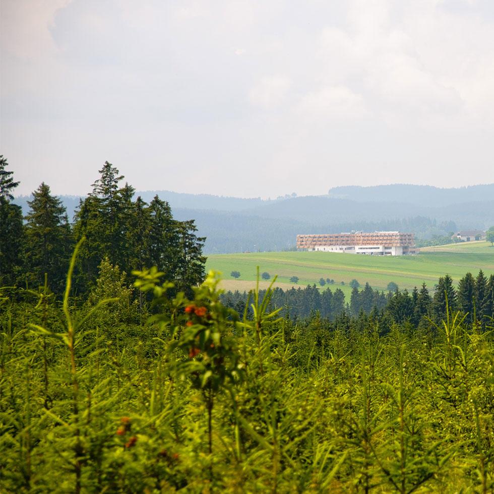 Attractions at Falkensteiner Hotel & Spa Bad Leonfelden