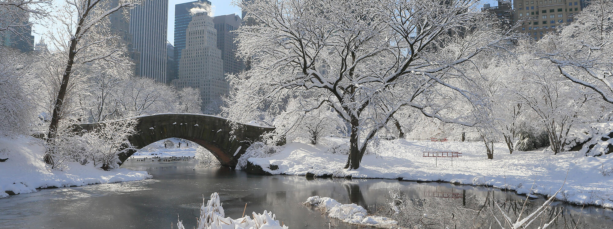 Central Park with snow