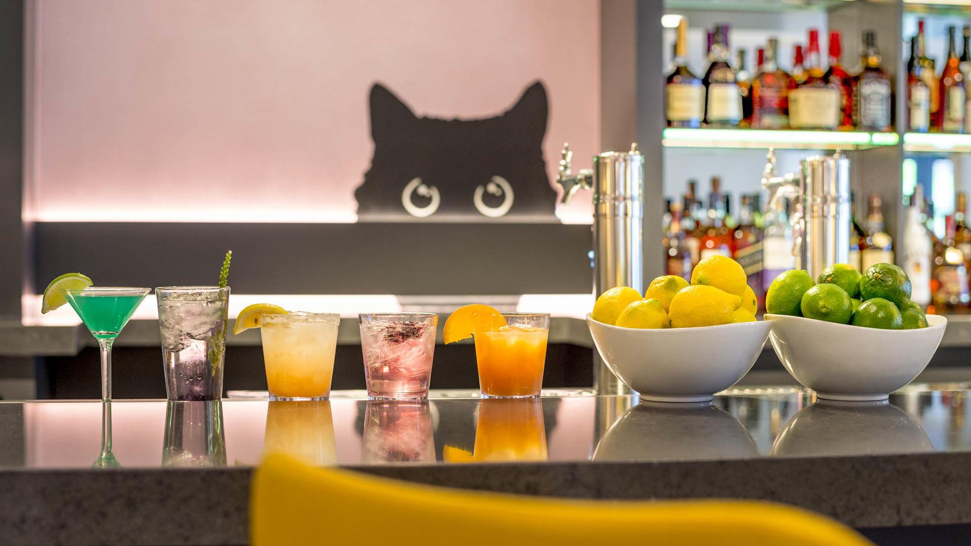Gattara Restaurant Cocktails at Warwick Denver